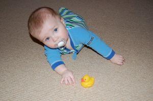 Crawling 003