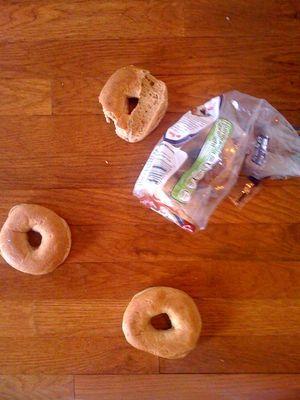 Bagels Everywhere